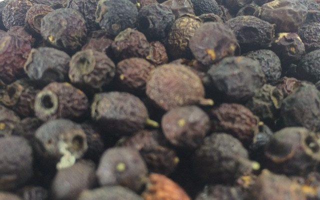 BIANCOSPINO bacche (Crataegus oxyacantha) by lacucinadilux