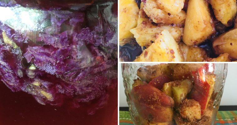 101 modi per dire  TEPACHE ❤️… bevanda frizzante a fermentazione spontanea